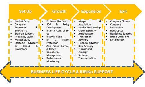 Global Corporate Financial Risk And Strategic Advisory Market,