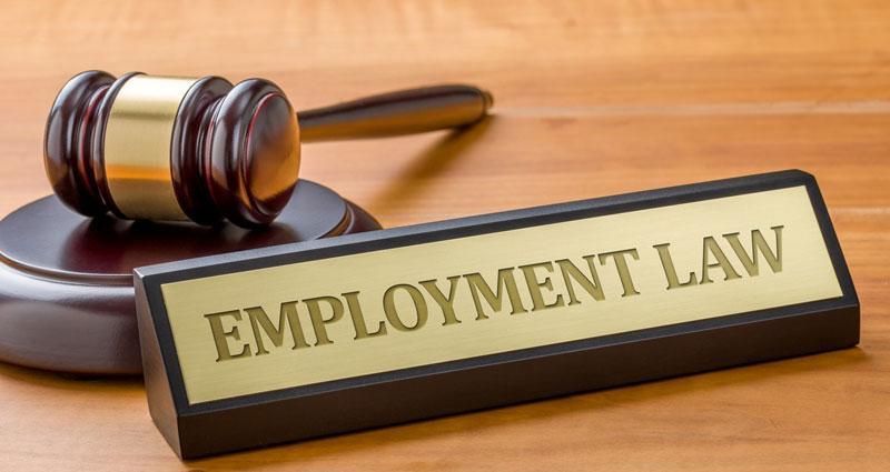 Employment Litigation Market