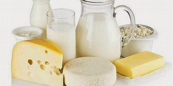 Global Dairy Protein Market Expected to Witness a Sustainable