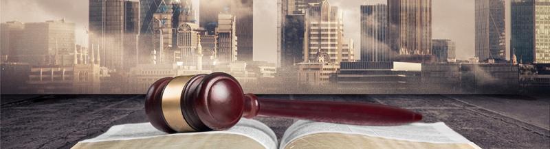 Insolvency Litigation Finance Solutions Market