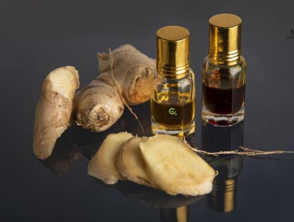 Ginger Oleoresin Market Size, Share, Development by 2024