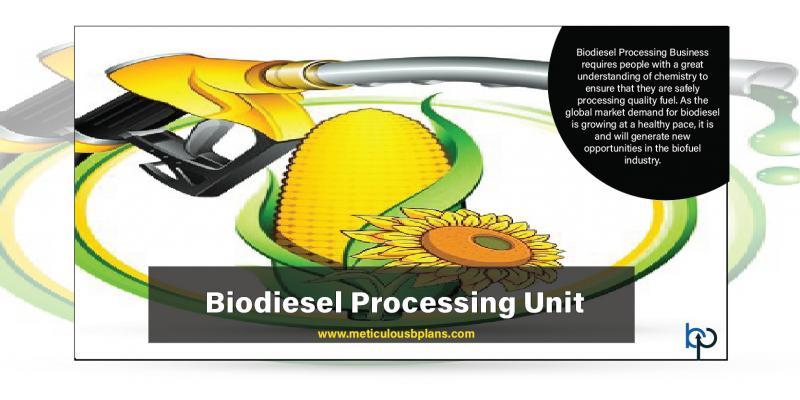 Biodiesel Processing Unit