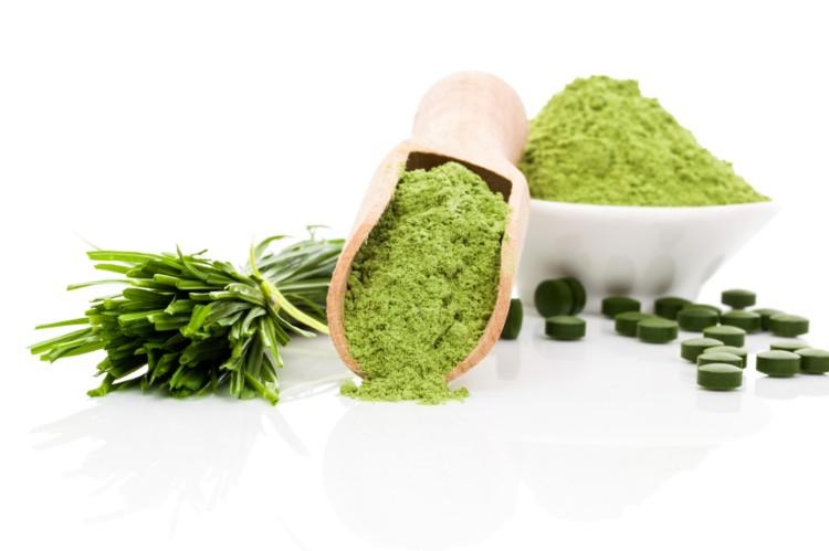 Weight Loss Ingredients Market