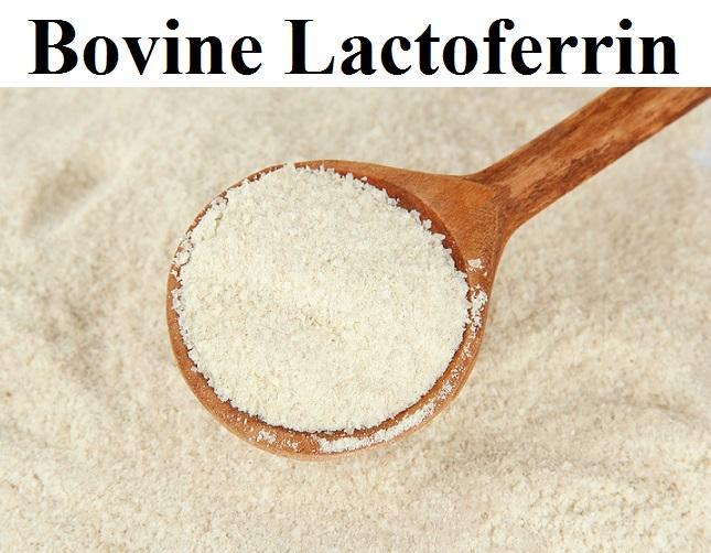Bovine Lactoferrin Market