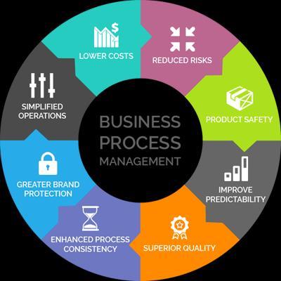 Business Process Management Platforms Market Report 2019-2025