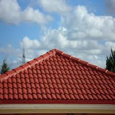 Roof Paint Market
