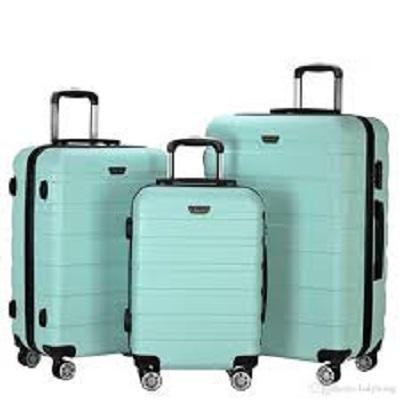 Travel Luggage Bag Market