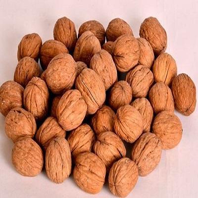 Walnut Product Market