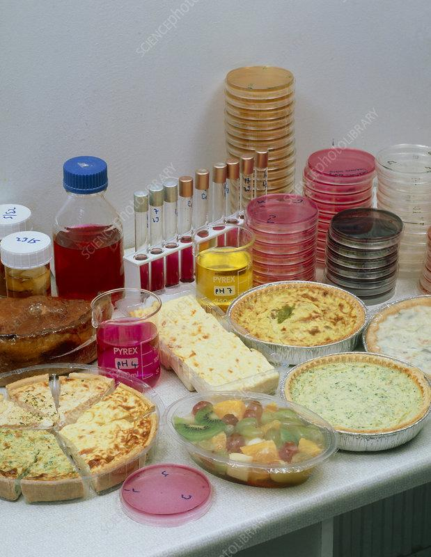 Food Microbiological Testing