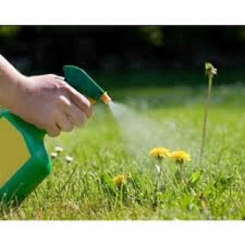 Bio-Herbicides Market