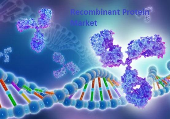 Recombinant Protein Market Ongoing Industry Trends and Recent