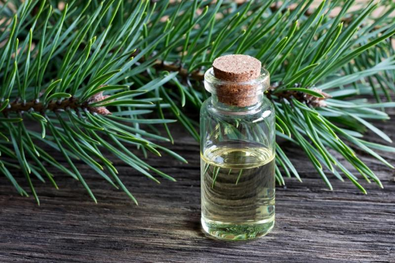 Pine-Derived Chemicals Market