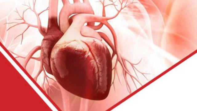 Peptide-based Cardiovascular Therapeutics