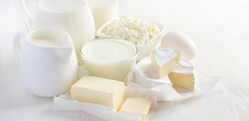 Dairy Starter Market