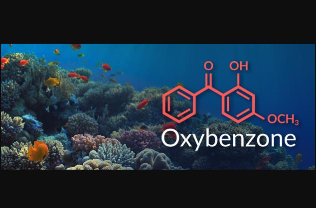 Global Oxybenzone Market Expected to Witness a Sustainable