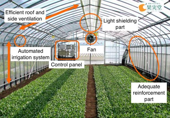 Key Opportunities and Challenges in the Smart Greenhouse Market