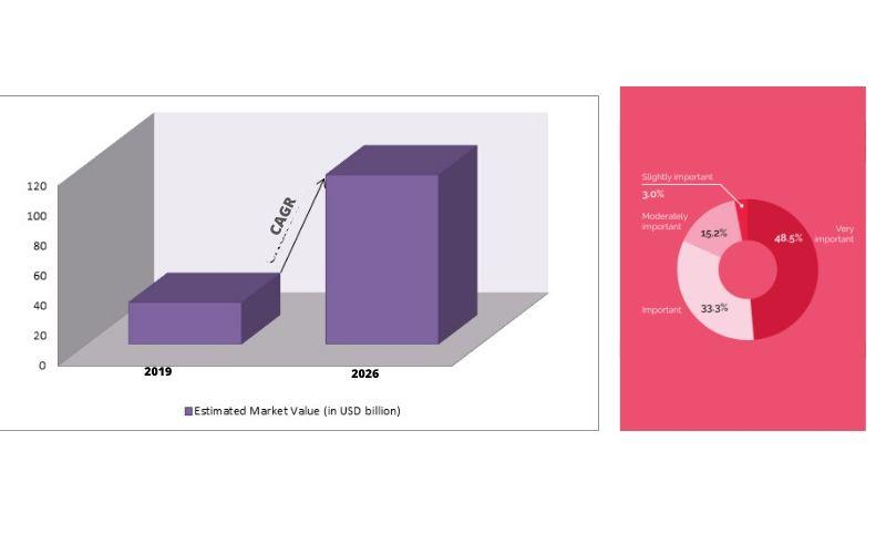 Global density meter market