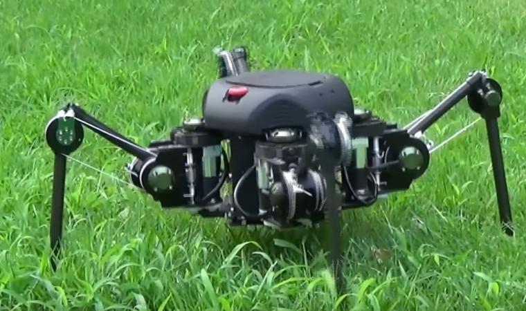 Sprawling-type Quadruped Robot Market Size, Share,