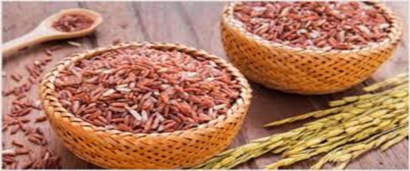 Organic Rice Market 2019-2025: Increasing Demand in the Food