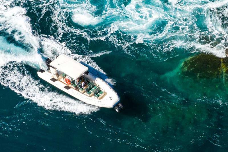ASIS Transport & Tour Boats