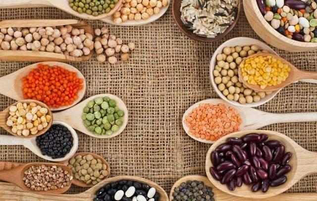 Global Neutral Alternative Protein Market Expected to Witness