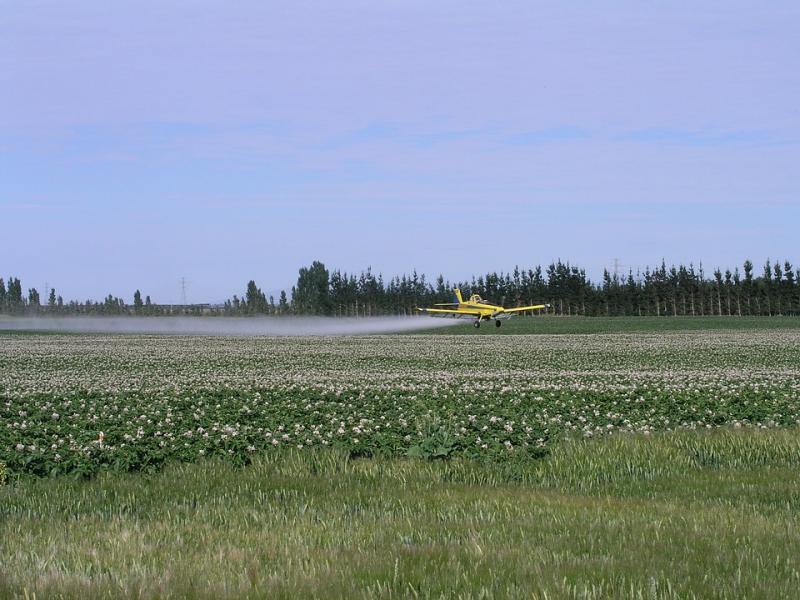 Insecticide Seed Treatment Market Release involving Bayer