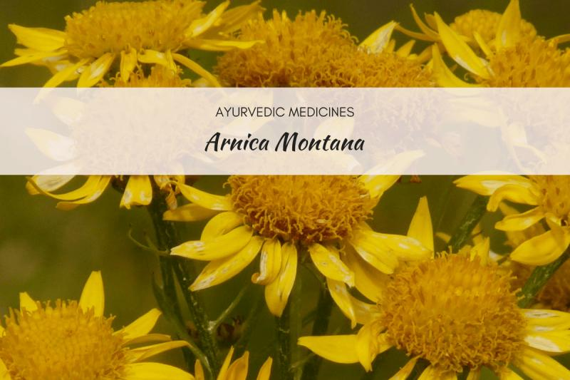 Arnica Montana Market to Witness Robust Expansion by 2024