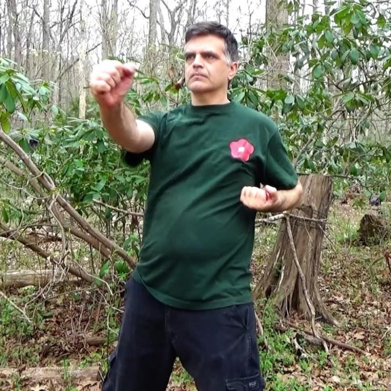 Sifu Erik Larson Siu Nim Tao Right-hand Center Punch