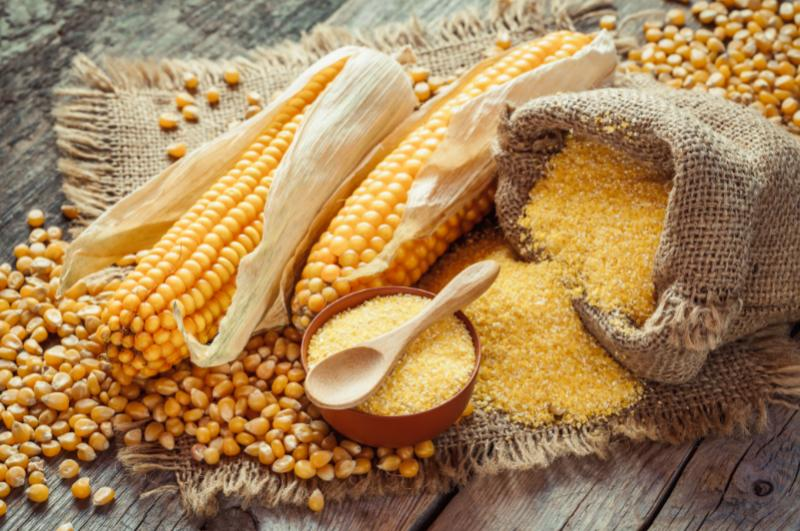 Global Corn Co-product Market to Witness a Pronounce Growth