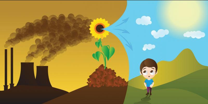 Greenhouse gas market