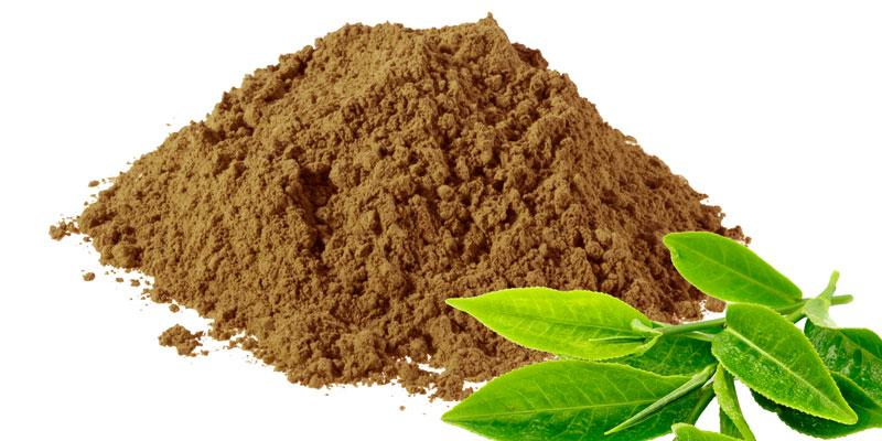 Fantastic Growth of Instant Tea Powder Market 2019-2025 with Top
