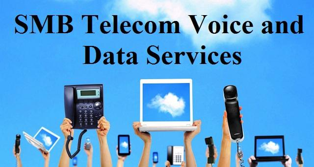 SMB Telecom Voice and Data Services Market