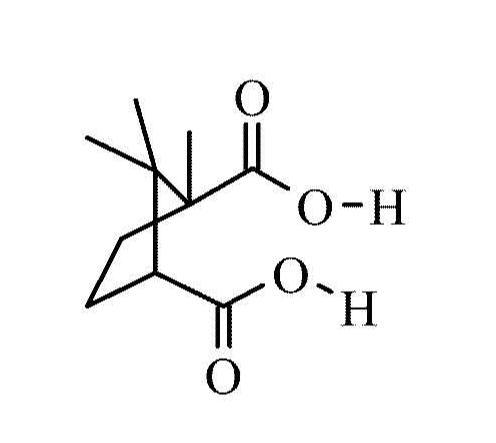 Camphoric Acid Market: Competitive Dynamics & Global Outlook