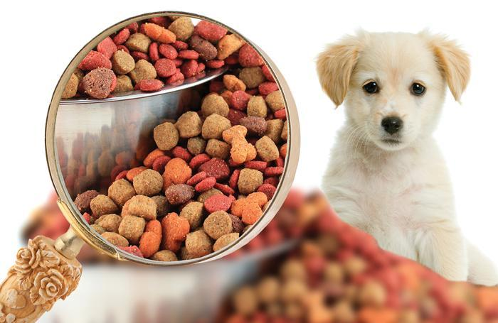 Pet Food Market Global Production, Demand and Top Key Players