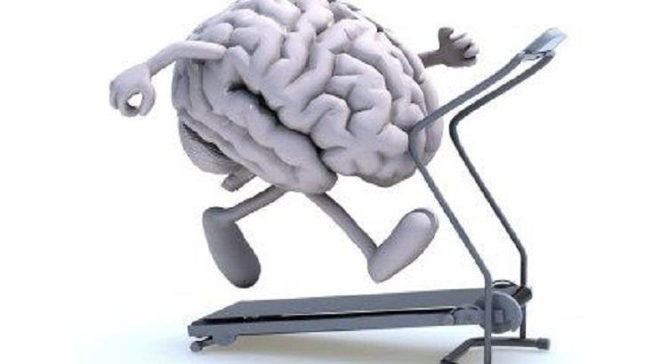 Brain Fitness Marketing Market