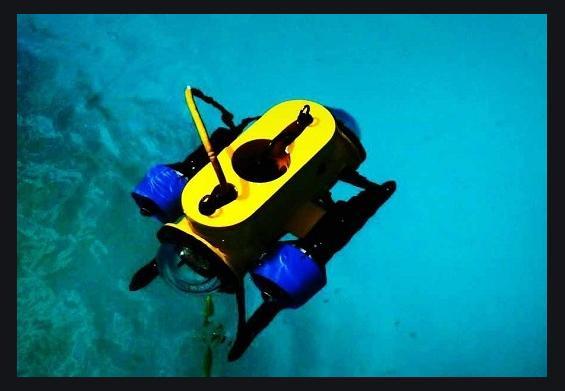 Global Observation Mini ROV Market: