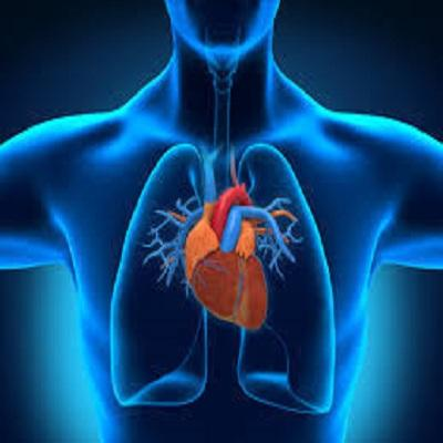 Interventional Cardiology Devices Market has Eventually