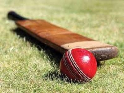 Marché du cricket