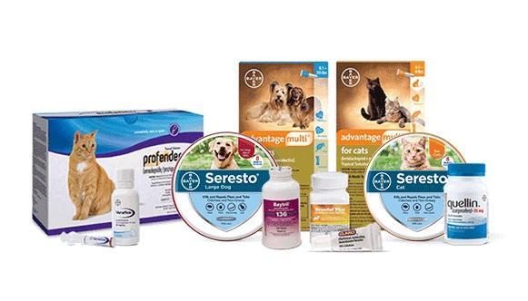 Marché des produits de santé animale: dynamique concurrentielle et