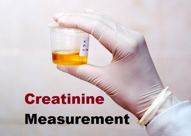 Creatinine Measurement Market