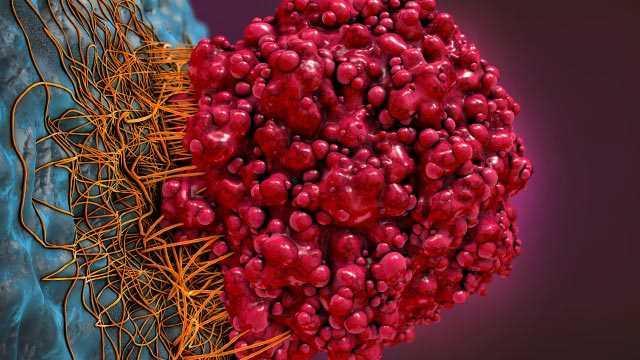 Cancer Therapeutics Market