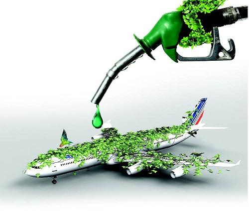 Aviation Biofuels Market