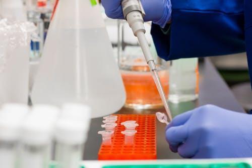 Marché du microbiome humain
