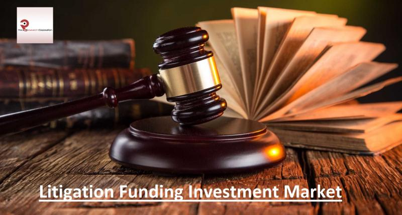 Litigation Funding Investment Market