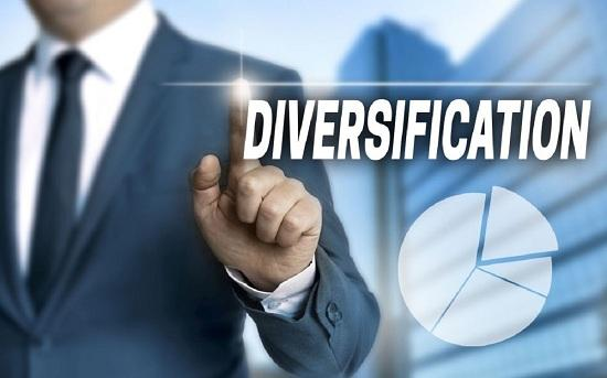 Business Diversification Strategy Market