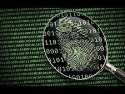 Forensic Accounting Services Market