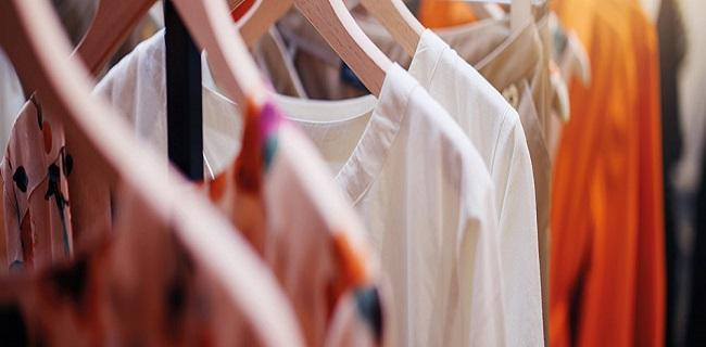 Intelligence Clothes Hangers Market Survey Report 2019 -