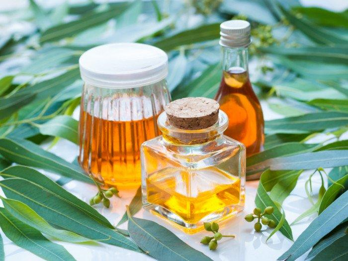Eucalyptus Oil market Basic Segments And Value Chain Structure