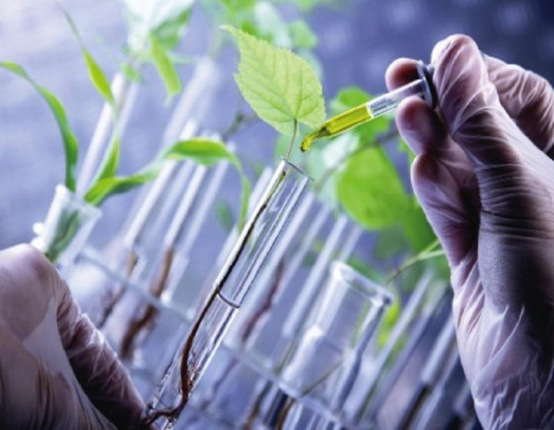 How bio-renewable chemicals are transforming the outlook