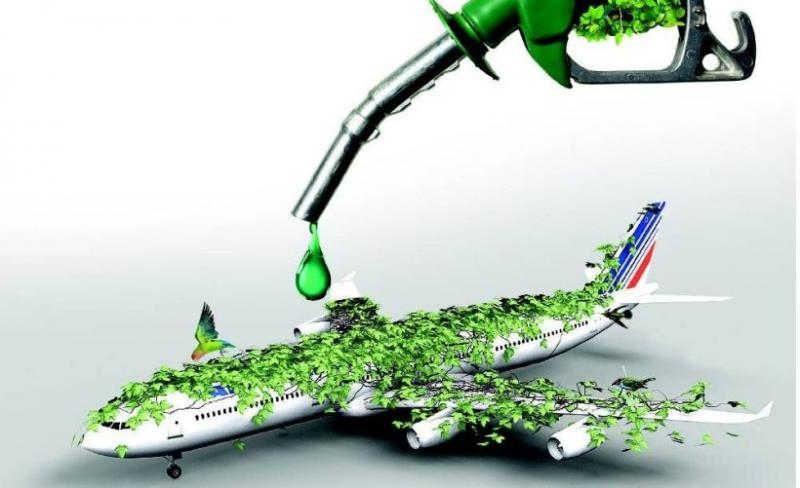 Aviation Biofuel Market Development Trends, Growth Factors